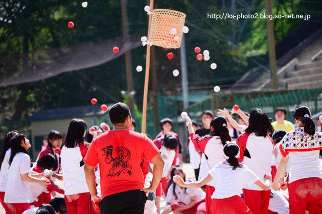 体育祭-8318.jpg